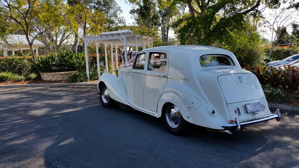 Rolls Royce Silver Dawn Wedding car